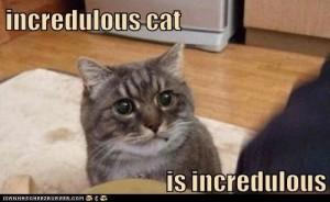 incredulouscat_zps91641ceb